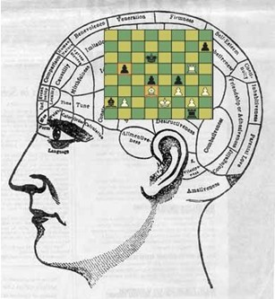 chess memory brain with board